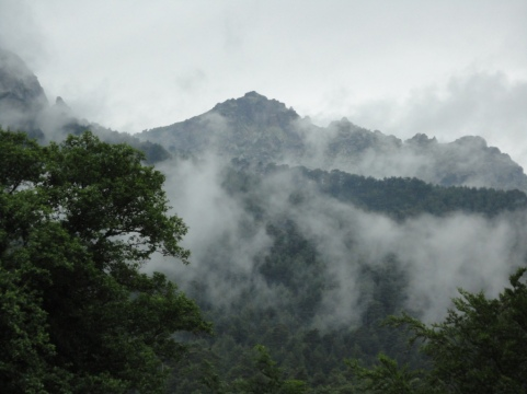Mountains clothed in chestnut forests