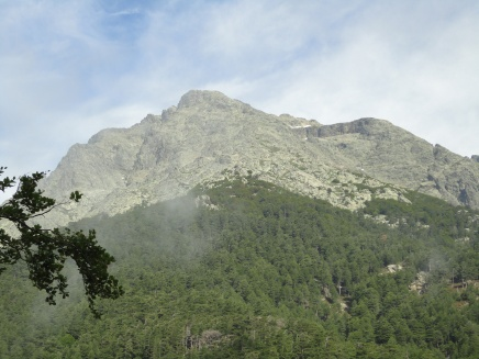 Slopes covered with chestnut trees, Monte D'Oro in the background